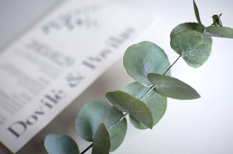 Eucalyptus Letterpress Wedding Invitations   ELEGANTE ...